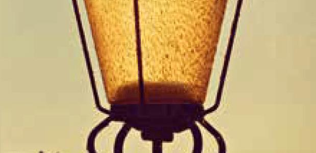 Beeld: Mabel Amber Pxabay