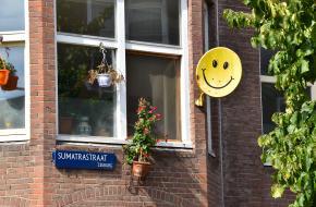 Etnische diversiteit in Nederlandse buurten